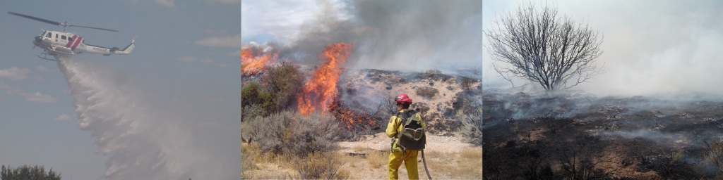 California Wildfires - The Force